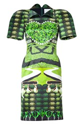 Mary Katrantzou Jade Garden Tea Party Print Dress Green