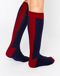 Johnstons Cashmere Long Socks Claret Navy