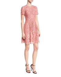 Burberry Short Sleeve Lace Fit And Flare Dress Antique Rose
