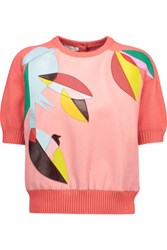 Delpozo Cropped Appliqued Leather And Wool Sweater Multi