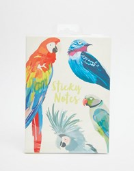 Paperchase Let's Squawk Sticky Notes Multi