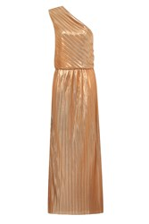 Hotsquash Clever Lined One Shoulder Maxi Dress Copper
