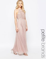 Maya Petite High Neck Maxi Tulle Dress With Tonal Delicate Sequins Mink Pink
