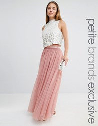 True Decadence Petite All Over Tulle Full Maxi Skirt Mink Pink