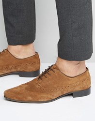 Asos Oxford Longwing Brogue Shoes In Tan Leather Tan