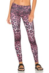 Onzie High Rise Legging Purple