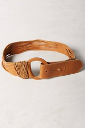 Anthropologie Zuna Belt Brown