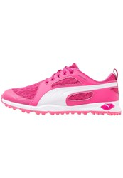 Puma Golf Biofly Golf Shoes Beetroot Purple White Pink