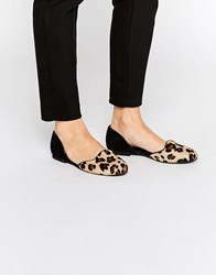 Park Lane 2 Part Flat Shoes Leopard Pony And Bla Multi