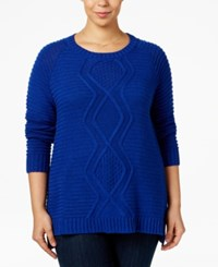Ny Collection Plus Size Cable Knit Sweater Alpha Blue