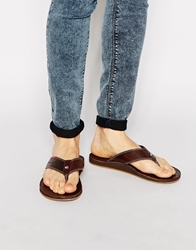 Tommy Hilfiger Timsbury Leather Flip Flops Brown