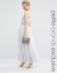 True Decadence Petite Tulle Maxi Skirt Soft Gray