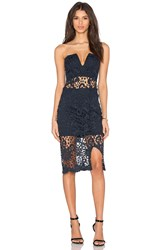 Wyldr X Revolve Roxbury Dress Navy