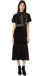 Rebecca Taylor Shadow Floral Velvet Dress Black Combo