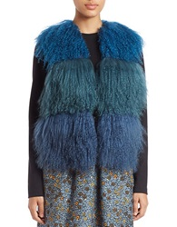 Anna Sui Colorblocked Lamb Fur And Suede Vest Cerulean
