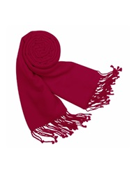 Forzieri Solid Pashmina And Silk Fringed Shawl Cranberry