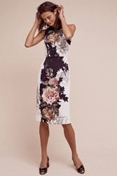 Anthropologie Elsinore Dress Black And White