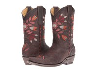 Old Gringo Amitola Chocolate Cowboy Boots Brown