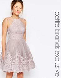 Chi Chi Petite Chi Chi London Petite Premium Embroidered Lace Tulle Midi Prom Dress With Mesh Shoulder Detail Mink