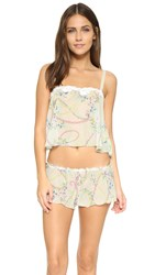 Hanky Panky Chiffon Cropped Cami And Tap Pants Sleep Set Multi