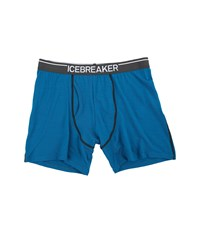 Icebreaker Anatomica Boxers W Fly Alpine Monsoon White Men's Underwear Blue