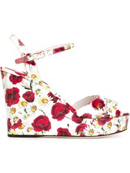 Dolce And Gabbana Daisy And Poppy Print Sandals White