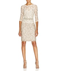 Tadashi Shoji Dress Three Quarter Sleeve Illusion Neck Lace Latte Pumice