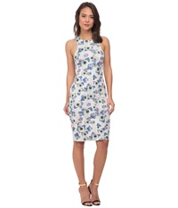 Whitney Eve Blackberry Dress Ditzy Python Women's Dress White