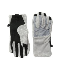 The North Face Women's Denali Thermal Etip Glove Lunar Ice Grey Extreme Cold Weather Gloves Bone