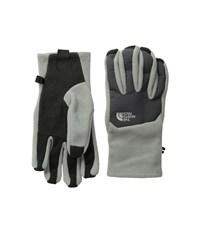 The North Face Men's Denali Etip Glove Moon Mist Grey Asphalt Grey Extreme Cold Weather Gloves Beige