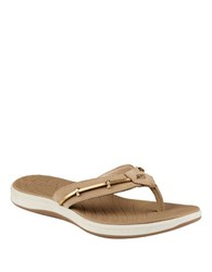 Sperry Seabrook Wave Leather Slides