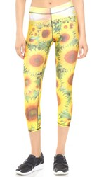 Zara Terez Sunflower Performance Capri Leggings Multi