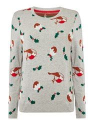 Dickins And Jones Rhian The Robin Xmas Pudding Jumper Grey