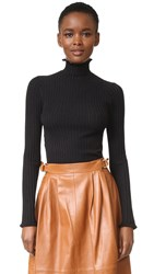 Derek Lam Ruffle Edge Turtleneck Sweater Black