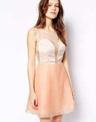 Aryn K Skater Dress With Sheer Overlay Coral
