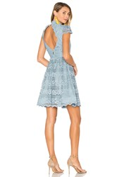 Alice Olivia Maureen Lace Dress Baby Blue