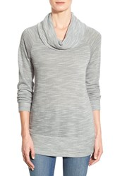 Women's Bobeau Cowl Neck Tunic Top Gray White