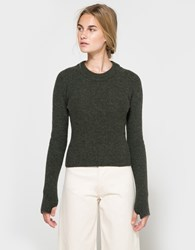 Christophe Lemaire Short Sweater In Spruce