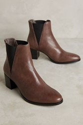 Anthropologie Alba Moda Chelsea Booties Grey