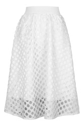 Cut Out Polka Dot Midi Skirt By Rare White