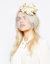Johnny Loves Rosie Alia Statement Floral Headband Alia
