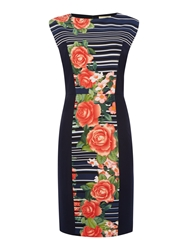 Linea Floral Stripe Dress Multi Coloured