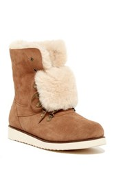 Australia Luxe Collective Yael Genuine Sheepskin And Shearling Lined Boot Brown