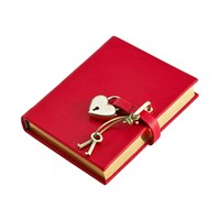 Graphic Image Small Locked Leather Journal Red