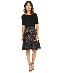 Nue By Shani Knit Bodice Dress W Laser Cutting Fit And Flare Skirt Black Nude Women's Dress Multi