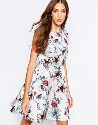 Yumi Floral Print Skater Dress Blush Pink