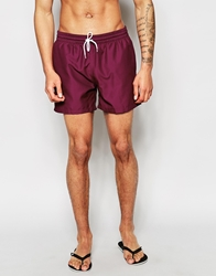 Farah Monroe Stripe Swim Shorts Purple