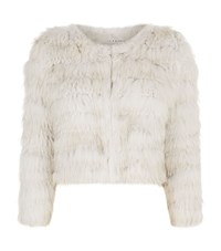 Alice Olivia Fawn Fur Jacket Female Brown