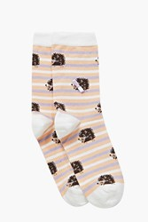 Boohoo Hedgehog Striped Ankle Socks Multi