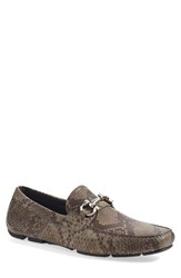 Salvatore Ferragamo Men's 'Parigi' Genuine Snakeskin Driving Shoe Mud Snakeskin